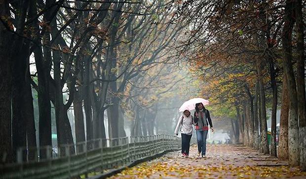 Kiến tạo địa điểm cây xanh ở Hà Nội