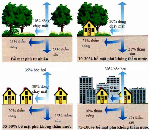 Hình 1: Mối tương quan giữa bề mặt phủ và sự tạo thành dòng chảy tràn trên bề mặt