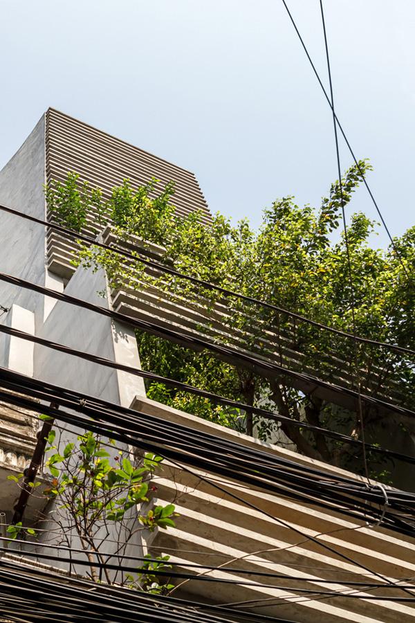Mặt tiền ngôi nhà với rất nhiều cây xanh.