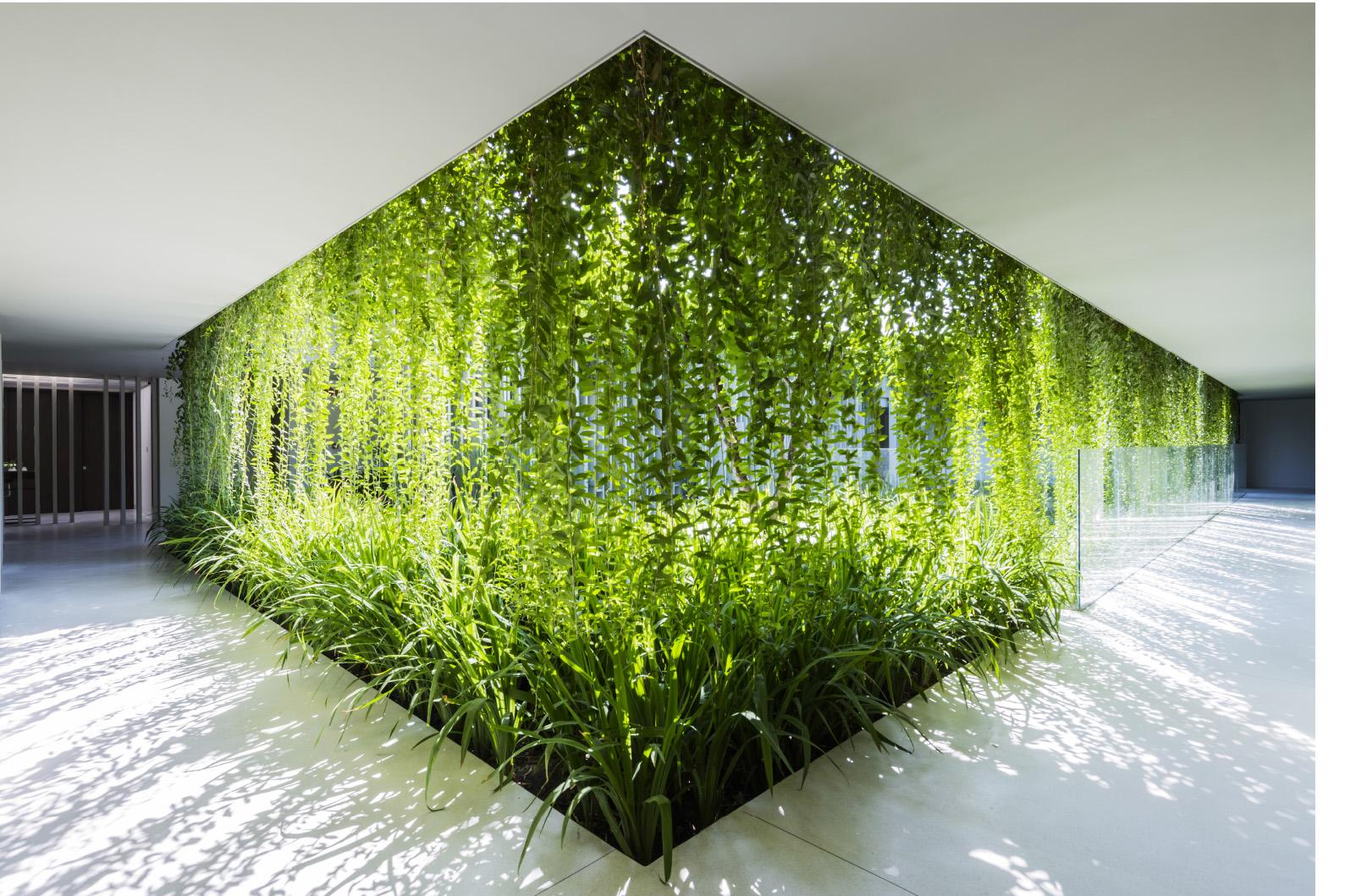 Kết quả hình ảnh cho kiến trúc xanh