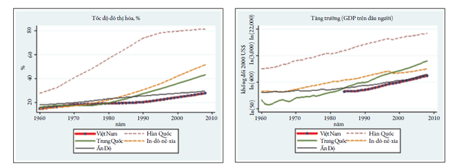 Hình 3. So sánh tốc độ đô thị hóa và tăng trưởng GDP giai đoạn 1960 – 2010. Nguồn: World Bank (2011)