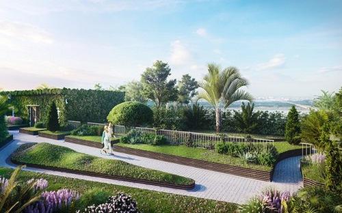 """""""Vườn trên cao"""", điểm nhấn của những công trình xanh"""