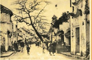 Cây nghiêng ra đường tìm không gian sống - Phố Mã Mây cuối thế kỷ 19 (Rue des Pavillons Noirs) (Nguồn: http://hanoilavie.com)