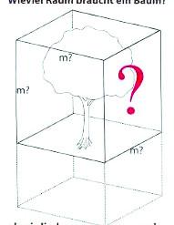 Một cây gỗ lớn cần từ 1.000-4.000 m3 trên mặt đất (Nguồn: Heidger, 2006)