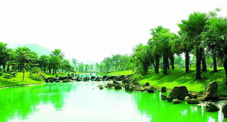 EDEN LANDSCAPE 12 năm phát triển và định vị thiết kế cảnh quan Việt
