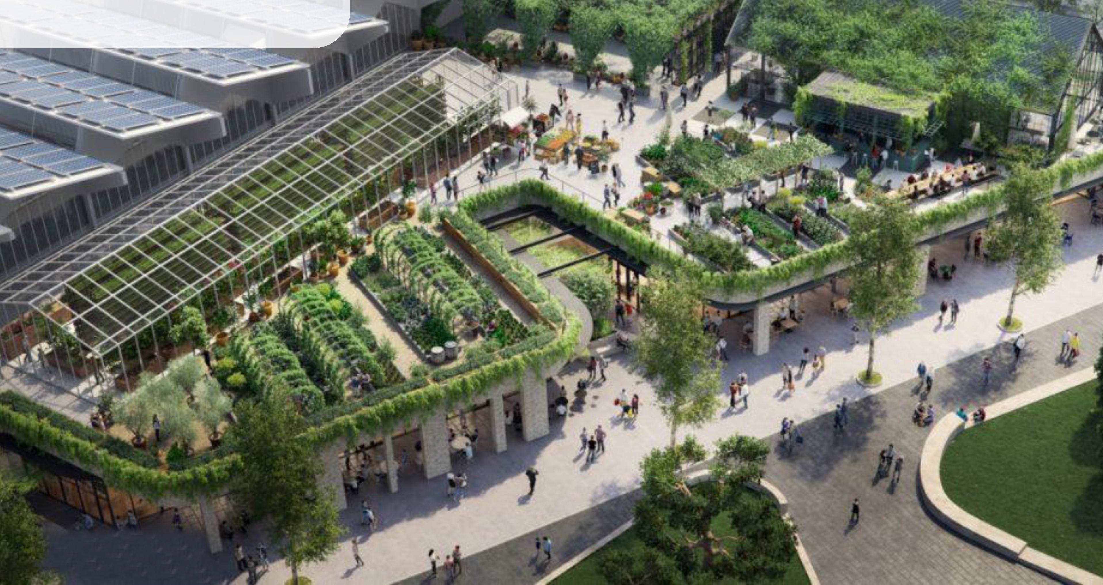 Bức tường biết thở – Công nghệ đột phá cho giải pháp xanh