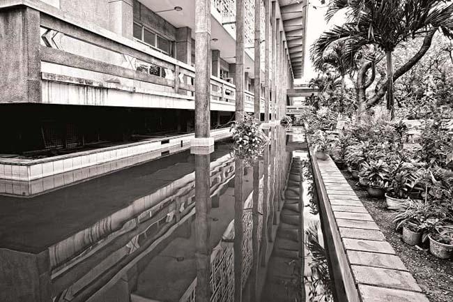 Ngôi nhà sàn cách điệu đứng trên hồ nước và bức tường hoa trên mặt đứng phòng đọc là giải pháp hợp lý.