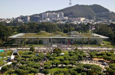 Mái nhà trên cao được tạo cảnh bằng các loại thực vật bản địa có khả năng chịu hạn.